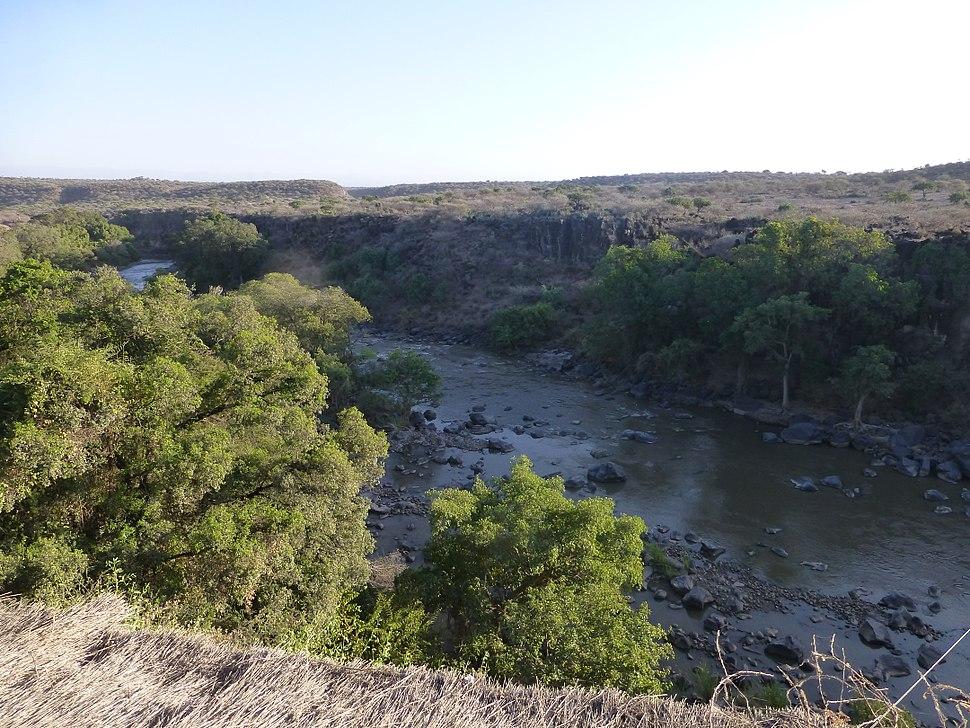Parc national d'Awash-Ethiopie-Rivière (1)