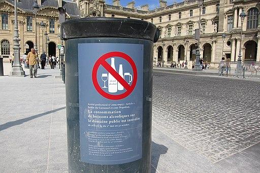 Paris - Place du Carrousel - 20110530 (1)