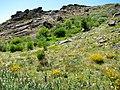 Parque Natural de Montesinho Porto Furado trail (5732628345).jpg