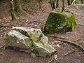 Pas-du-loup Paslieres 2012-12 n01.jpg