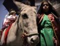 Pase niño viajero 2013 cuenca burro niños.png