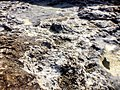 Pedra do Sal, pormenor.jpg
