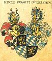 Pfalz-Lützelstein Siebmacher004 - Herzogtum.jpg