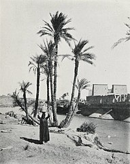 Philae Before the Assouan Dam Was Built (1906) - TIMEA.jpg