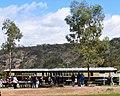 Pichi Richi Railway carriages at Saltia.jpg