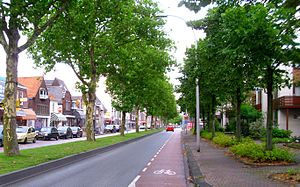 Pijnacker - A street(oostlaan) in Pijnacker