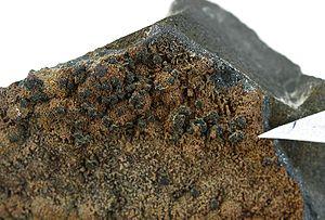 Pirquitasite-Toyohaite-rar09-wp14b.jpg