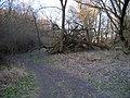 Pitkovice, stezka v údolí Pitkovického potoka.jpg