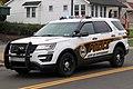 Pittsburgh Police Ford Police Interceptor Utility.jpg