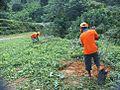 Planting Program.jpg