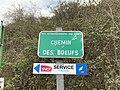 Plaque Chemin Bœufs - Créteil (FR94) - 2021-03-22 - 2.jpg