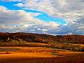 Pleaant Ridge - panoramio.jpg