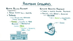 pneumonia - wikipedia, Human Body