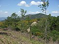 Poggio Cavadenti dalla cima del Castiglion Maggio - panoramio.jpg