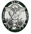 Polizei-Bergführer Nazitijd Insigne.jpg
