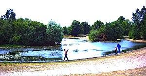 Mitcham Common - Pond on Mitcham Common.