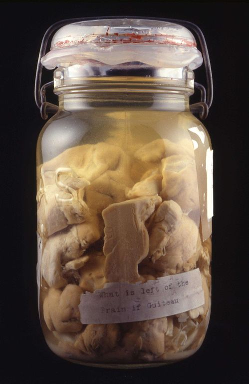 File:Portions of Brain of Charles Guiteau, Assassin of ...