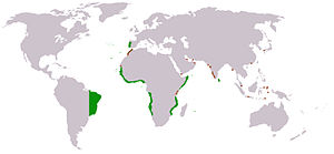 Portuguese colonial architecture - The Portuguese Empire at the end of the 16th century.