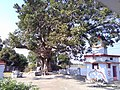 Premises of Koteshwar Temple, Nagardhan - panoramio.jpg