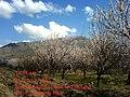 Qalamestan, Karaj, Alborz, Iran - panoramio.jpg