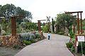 Quail botanical gardens 2.jpg