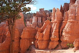 National Register of Historic Places listings in Bryce Canyon National Park - Image: Queens Garden Trail at Bryce