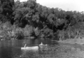 Queensland State Archives 1242 Barron River near Kuranda NQ c 1935.png