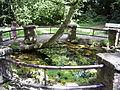 QuellbrunnenBN.jpg
