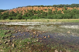 Río Yeltes 2.jpg