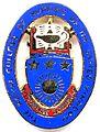 RCN Badge.jpg