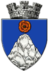 Coat of arms of Târgu Cărbunești