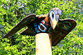 Raven on top of a totem pole.JPG