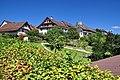 Regensberg - Oberburg - Unterburg 2011-08-28 14-24-42.jpg