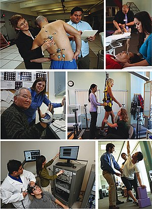 Kinesiology - A series of images that represent research (left) and practice (right) in the field of Academic Kinesiology