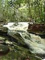 Reserva ecológica Lajes - panoramio (3).jpg