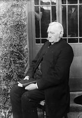 Revd William George Jenkins, vicar of Llandysul (Cer)
