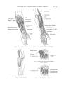 Richer - Anatomie artistique, 2 p. 65.png