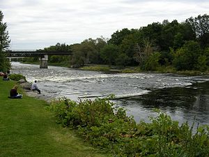 Rideau River - Rapids on the Rideau River opposite Carleton University