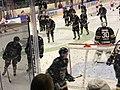 Ringerike Panthers 01.jpg