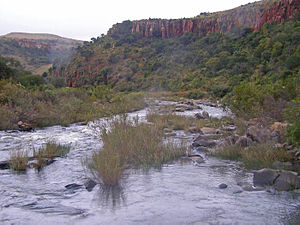 Komati River - The gorge near Carolina in the upper Komati River