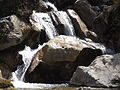 Rishikesh harikempty fallsdwar (385).JPG