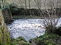 River Balder in spate at Cotherstone - geograph.org.uk - 1593166.jpg