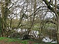 River Blackwater, Totton - geograph.org.uk - 1777757.jpg