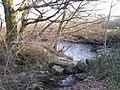 River Bovey near Little Bovey Farm - geograph.org.uk - 1660368.jpg