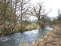 River Bradford. - geograph.org.uk - 110508.jpg