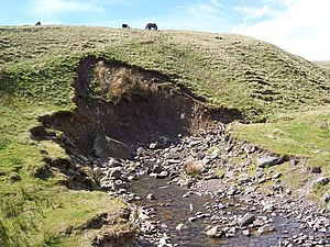 English: River Erosion Gais Gill Small scale b...