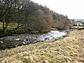River South Tyne below High Skydes - geograph.org.uk - 680640.jpg