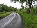 Road at Drumack - geograph.org.uk - 877073.jpg