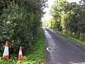 Road at Liscally - geograph.org.uk - 1482244.jpg