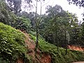 Roadside Landslip Anaimalali Hills IMG 20180822 164933119 BURST000 COVER TOP.jpg